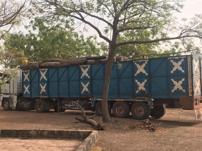 La préservation des forêts, une préoccupation pour les députés