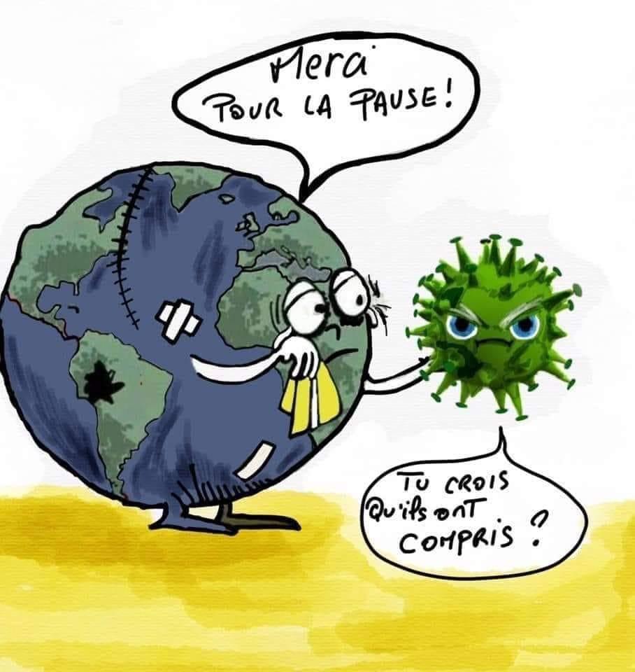 Pandémie – La Terre peut remercier le Coronavirus, mais… Par Nita Burg