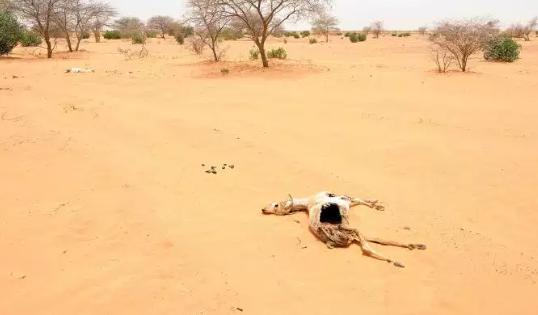 Des conditions de vie comme le Sahara guettent un tiers de l'humanité, d'ici 2070