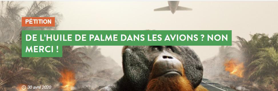 De l'huile de palme dans les avions? Non merci! Pétition