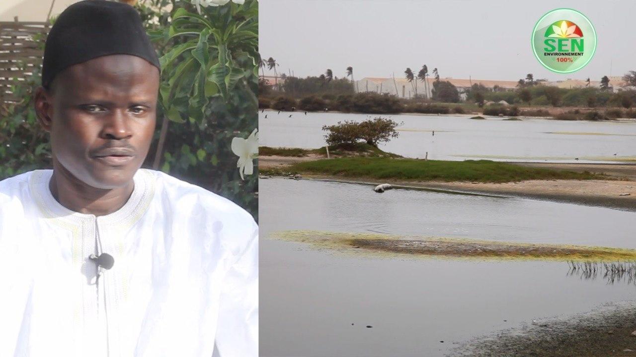 Protection de l'environnement – Grande Niaye – Tous les baux signés par l'Etat à des particuliers sont annulés