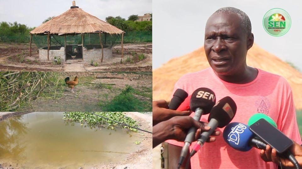 Tolou Keur – Le Sénégal lance un projet de forêts nourricières et médicinales