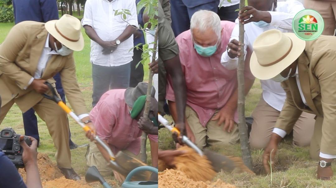 """Journée de l'Arbre – Macky Sall va """"reverdir"""" les autorisations de construire avec l'obligation de planter des arbres"""