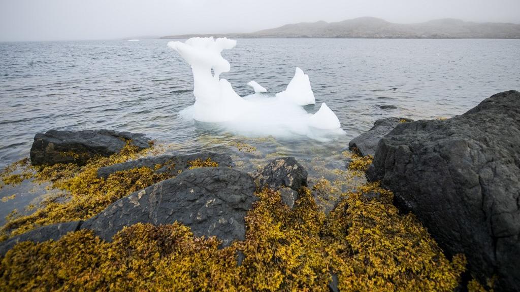 Climat – La Terre a perdu 28.000 milliards de tonnes de glace depuis 1994