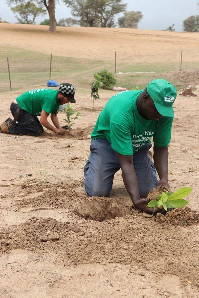 ASRGMV – Ndiob – Champ agro-écologique pour l'émergence des forêts comestibles et médicinales