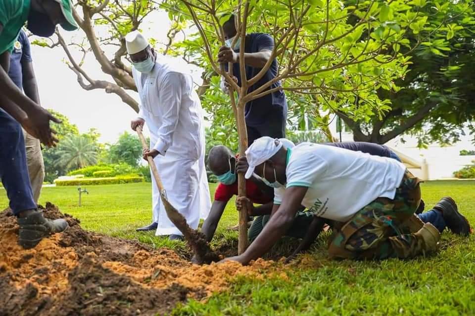 Reboisement – Le sapotier, le 5ème arbre planté par Macky Sall au Palais
