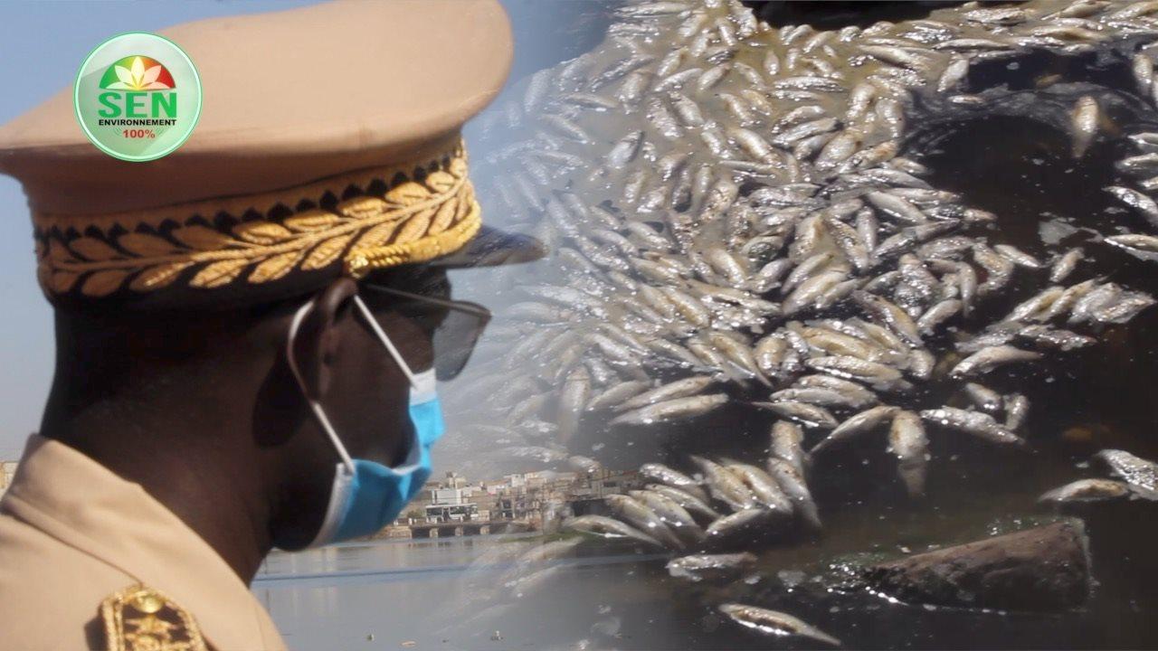 Catastrophe écologique à Mbao: le Gouverneur de Dakar prend des mesures fortes