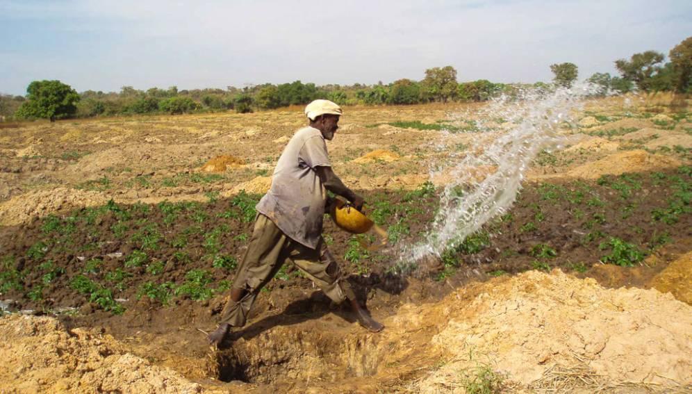Les petits exploitants agricoles sont les grands oubliés du financement climatique