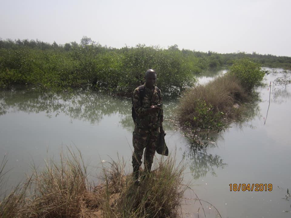 Cse – Collecte des données pour la réalisation des sites Ramsar du Delta et des Iles de Loos