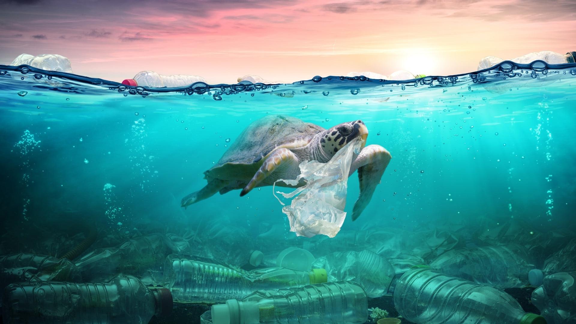 Environnement – Les déchets sont le plus gros échec de la société moderne